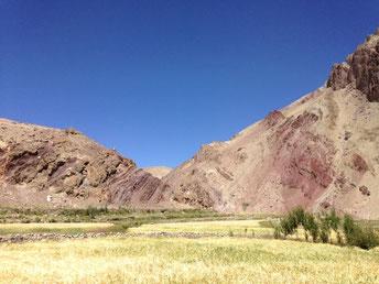 purpule hills (zauberberge) ladakh