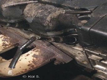 Kunden Auto Zündkabel und Schläuche vom Marder zerbissen