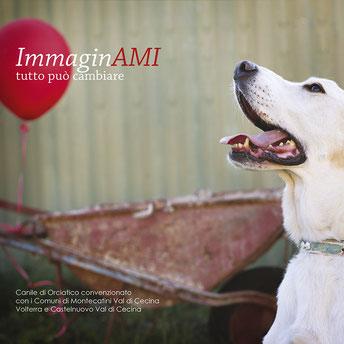 foto-cane-canile-PISA-palloncino-rosso