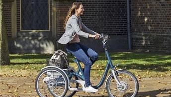Van Raam Maxi Dreirad Elektro-Dreirad in Tuttlingen