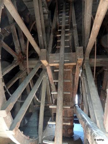 Tretmühle im alten Kran