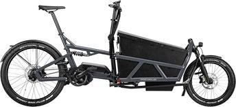 Riese und Müller Cargo e-Bike / Lastenfahrrad mit Elektromotor Load