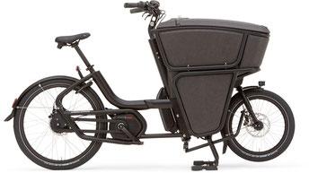 Urban Arrow Shorty CX 2020 e-Cargobike / Lastenvelo in Dietikon