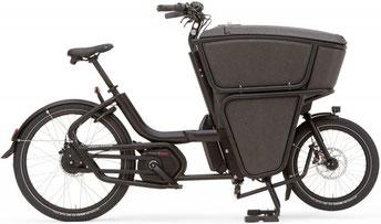 Urban Arrow e-Cargobike und Lastenvelo Shorty 2021