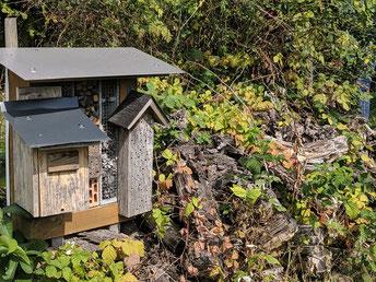 Kita-Naturbotschafter NABU RLP BMU BfN Kitas NABU-Naturschutzzentrum Rheinauen Bundesprogramm Biologische Vielfalt Kitas Naturschutz Biologische Vielfalt