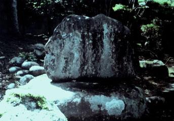 飯田市上郷町にある子規句碑の第一号(明治37年9月建立)  捨て鍬に蟻這日上る日永哉 子規 M.29 話者撮影