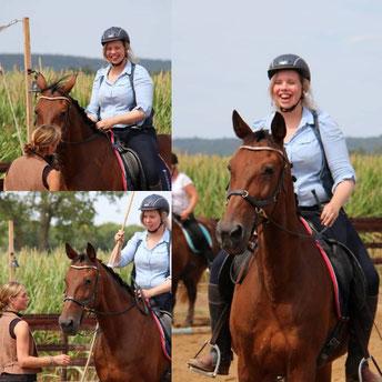 Clinic Working Equitation, Clinic paard, Clinic houding & zit, Clinic longeren, Clinic grondwerk, Workshop houding en zit