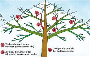 Bild: www.haus.de