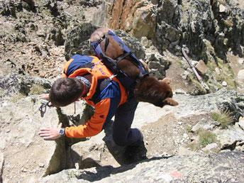 Abstieg vom Wilden Mannle (3.020 m)