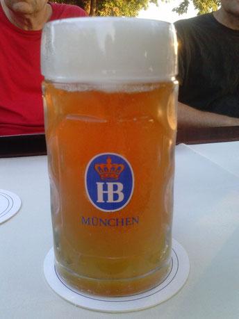 Hofbräu Sommerbier