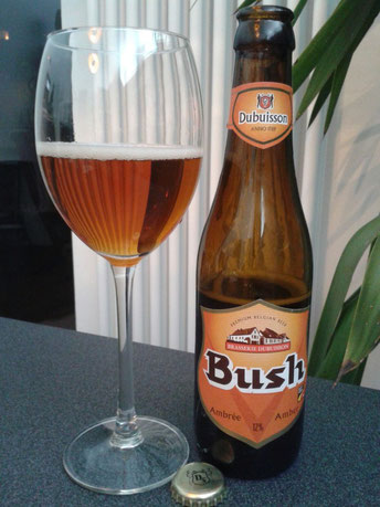 Dubuisson Bush Ambrée