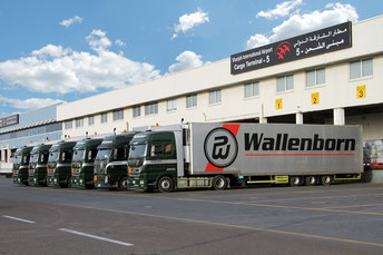 Wallenborn fleet at Sharjah Airport