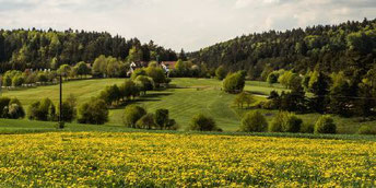 Natur pur - © Golfclub Lauterhofen e.V.