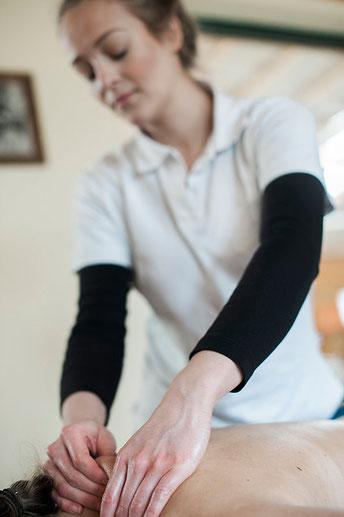 Physiotherapie Dorn Therapie Reitunterricht Würzburg Nürnberg Massage Wellness Behandlung Gesundheit