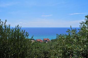 Ενοικιαζόμενα διαμερίσματα με θέα θάλασσα, κήπο και ιδιωτικό πάρκινγκ στην Παραλία Φωλιάς Καβάλας