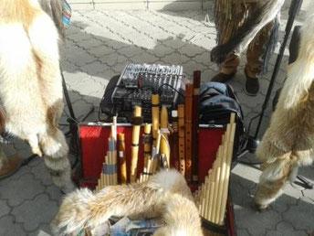 Петропавловск, индейцы, музыкальные инструменты
