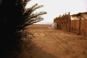 an diesem Zaun baute ich mein Nachtlager auf