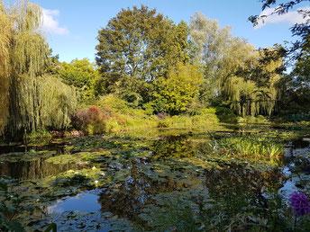 Jardin Monet mit Seerosenteich