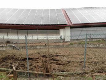 Gülle Biogas Erzeugung Foto Solarstrom Simon