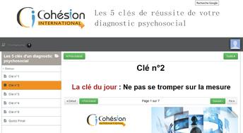 Formation diagnostic RPS Cohésion International pour savoir bien préparer et cadrer un diagnostic des risques psychosociaux de votre organisation