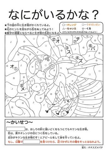 メルカリ 劇場版どうぶつの森 ぬりえ キャラクターグッズ 1000