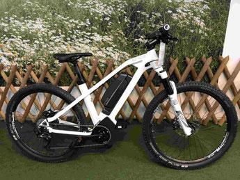 Grace MX II Trail EQ 2017 e-Mountainbike gebraucht günstig als Schnäppchen kaufen in Esslingen bei Stuttgart