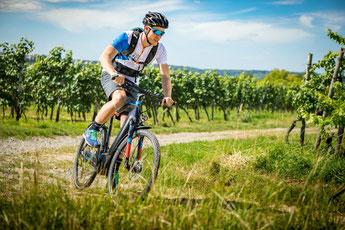 Testen Sie Hercules e-Bikes und Pedelecs in der e-motion e-Bike Welt Stuttgart