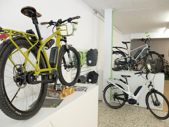 e-Bikes in der e-motion e-Bike Welt in Berlin-Steglitz kaufen