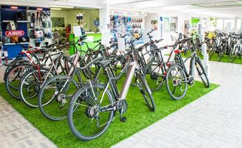 e-Bike Auswahl in der e-motion e-Bike Welt Kleve