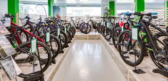 Lassen Sie sich in der e-motion e-Bike Welt Aarau-Ost von unseren Experten beraten
