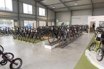 e-Bike Auswahl in der e-motion e-Bike Welt Bad Zwischenahn