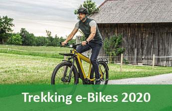 Trekking und Touren e-Bikes, Pedelecs und 45km/h S-Pedelecs