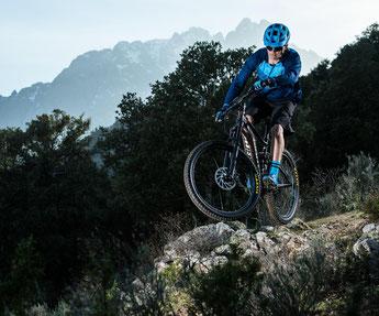 GIANT e-Bikes 2018