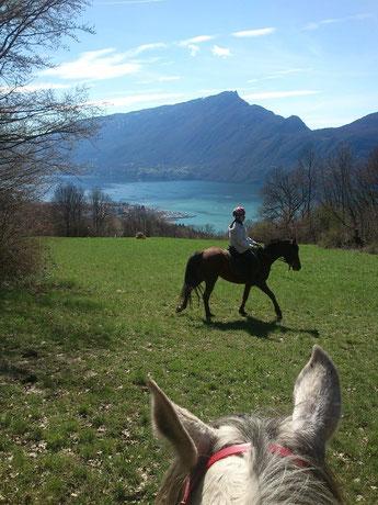 Lac du Bourget vu de la forêt de Corsuet