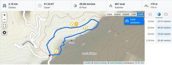 """Übersichtskarte - Wanderung mit Kilometermarkierungen und Angaben zu unserer """"Pace"""" :-)"""