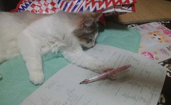 お勉強中です(^^♪