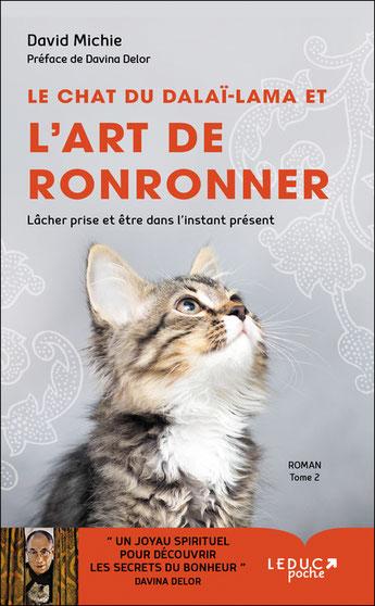 le chat du Dalai-Lama tome 2, Pierres de Lumière, tarots, lithothérpie, bien-être, ésotérisme