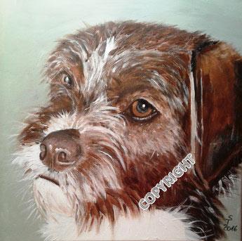 Hundeporträt, Acryl auf Leinwand, 40x40 cm. Kopfporträt von einem dunkelbraunen Hundemischling mit weißer Brust und teilweise weißen Haaren um die Schnauze und zwischen den Augen.
