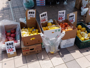北本あきんど市(2015/5/8) JAあだち野