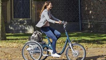 Van Raam Maxi Dreirad Elektro-Dreirad in Halver