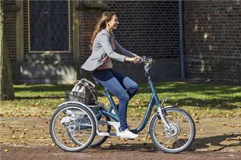 Van Raam Maxi Dreirad Elektro-Dreirad in Münster