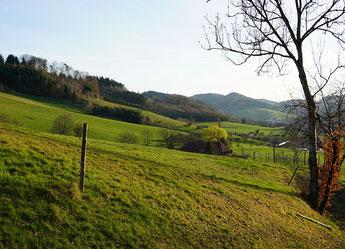 Erholungslandschaft Schwarzwald