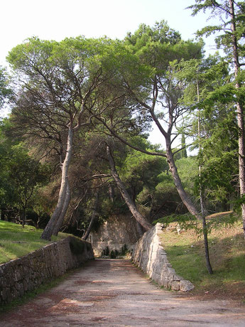Kroatien, Nationalpark Insel Brioni