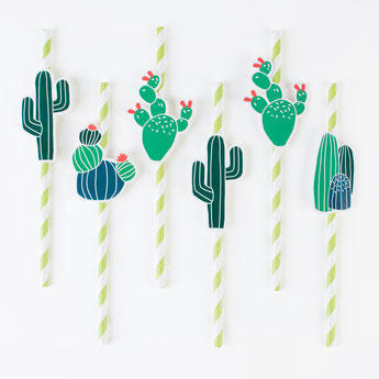 pailles cactus deco anniversaire indien, tropical- cactus straws indian party