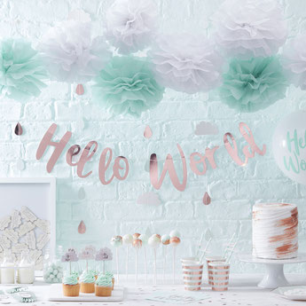 BABY SHOWER HELLO WORLD- DECO BABY SHOWER FILLE- HELLO WORLD GIRL BABY SHOWER DECORATION