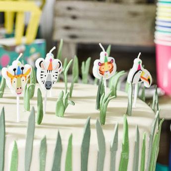 anniversaire-1-an-theme-jungle-savane-deco-gateau.jpg