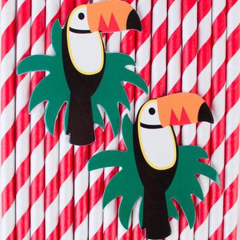 accessoires-deco-table-anniversaire-garcon-pailles-toucan