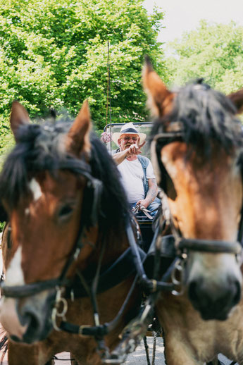 Kutsche für eine Fahrt durch die Lüneburger Heide