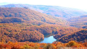 Abb. 1: Das Waldgebiet Sninský kameň in den slowakischen Karpaten (Foto: Milan Bališin, Lizenz: CC BY-SA 4.0)