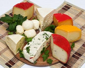 предметное фото твердых сыров